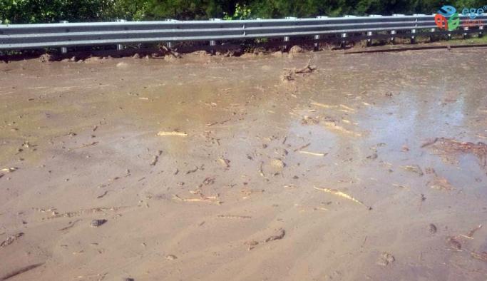 Aşırı yağış sele ve heyelana sebep oldu
