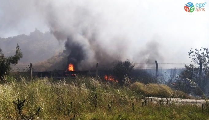 Termik santralin kömür bandında yangın