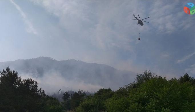 Bilecik'te dün kontrol altına alınan orman yangını tekrar başladı