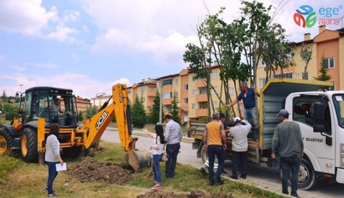 Emet Belediyesi'nden çevre düzenleme çalışmaları