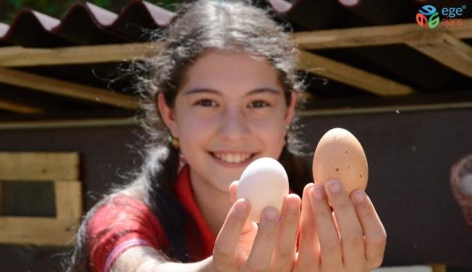 Öğrenciler bu okulda tavuk besliyor, sebze ve meyve yetiştiriyor