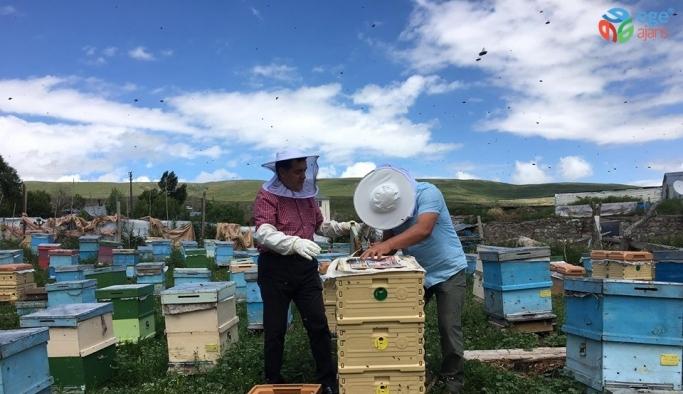 Başkan Demir, Çataldere Köyünde bal üreticisini ziyaret etti