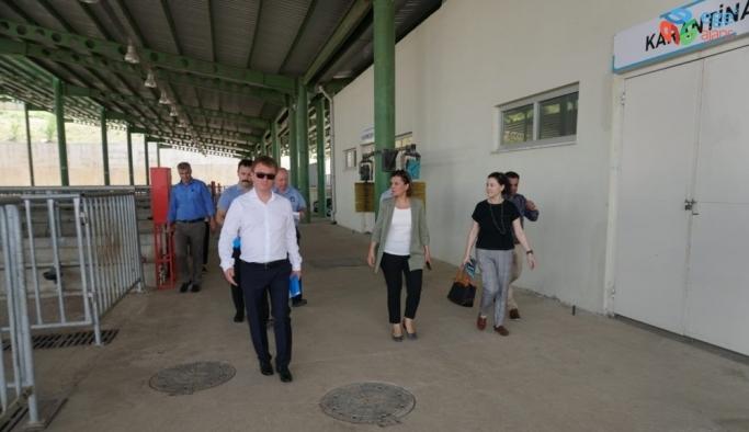 Başkan Hürriyet'ten hayvan satıcılarına indirim müjdesi