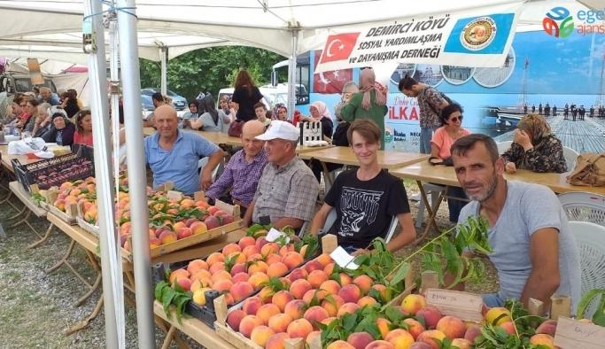 Demiciköy'de Şeftali Festivali