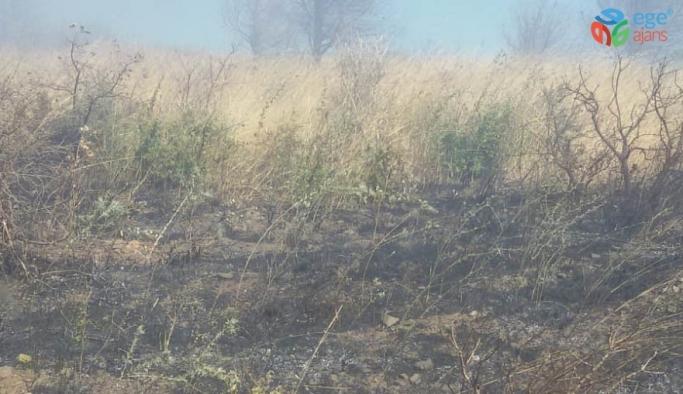 Erdek'te çöplük yangını korkuttu