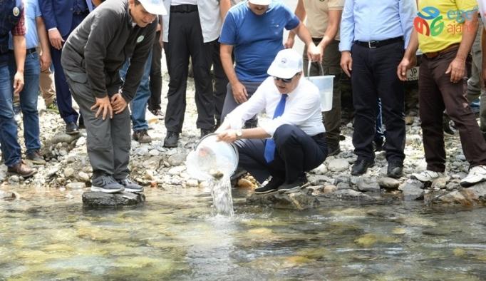 Vali Su, Çamlıyayla'da incelemelerde bulundu