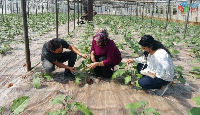 Antalya'da 10 bin 484 çiftçiye biyolojik mücadele eğitimi verildi