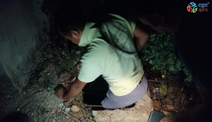 Çukura düşen yavru köpek kurtarıldı