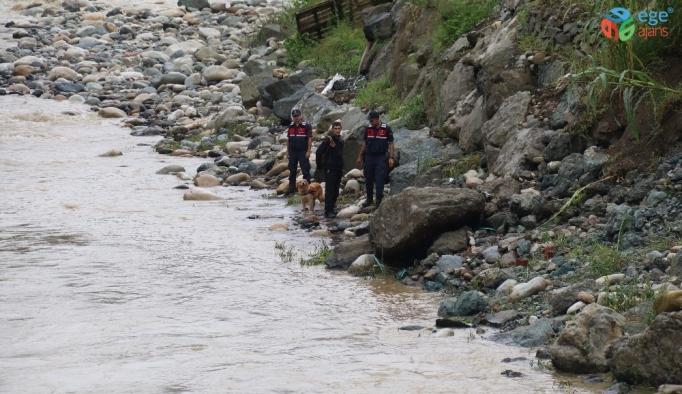 Rize'de sele kapılan Hüseyin Çapoğlu'nu aramaya, Fındıklı'nın kahramanı 'Kır' ile devam ediliyor