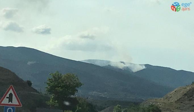 Sinop'ta orman yangını devam ediyor
