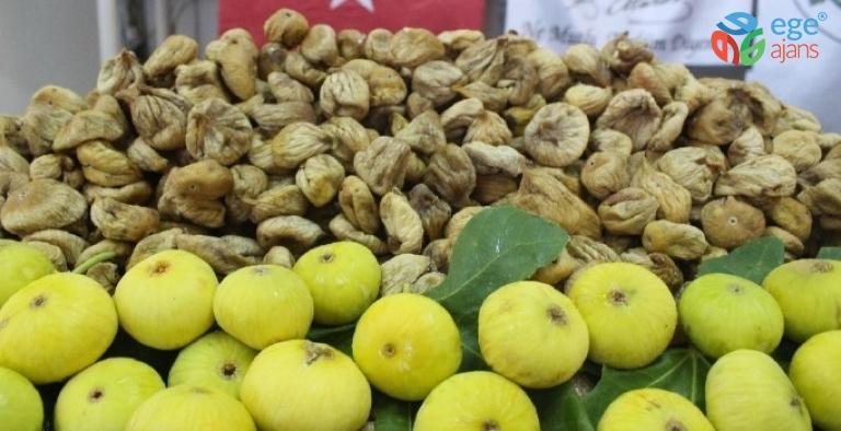 Tariş kuru incir alım fiyatlarını açıkladı