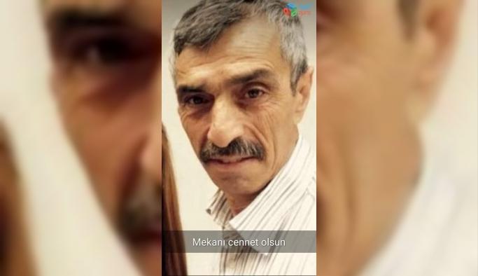 Tomruk çarpan orman işçisi hayatını kaybetti