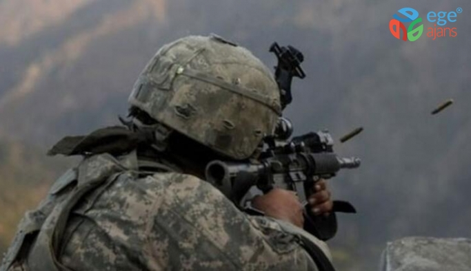 Mardin Özel Harekat Şube Müdürü'nü şehit eden 3 terörist öldürüldü