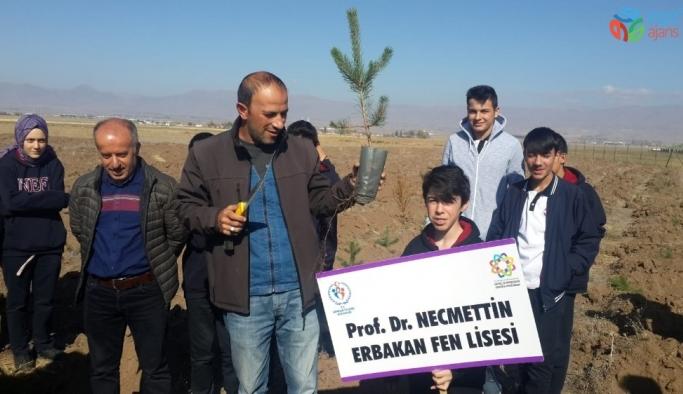 Fen Lisesi öğrencileri ağaç dikti