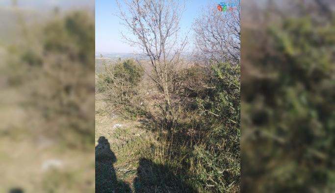 Bursa'da ceset bulundu