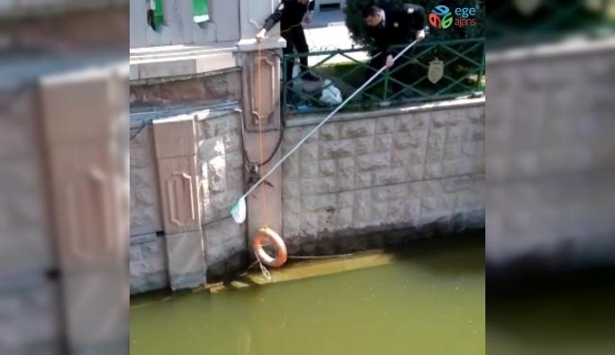 Suya düşen kediyi güvenlik görevlileri kurtardı
