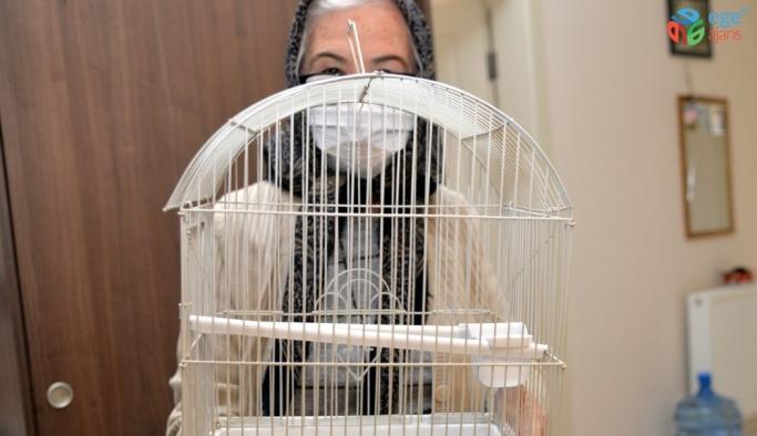 Vefa İletişim Merkezini arayıp muhabbet kuşu istedi