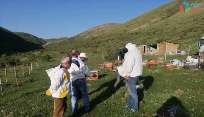 Karadenizli gezgin arıcılar Erzurum'u tercih ediyor