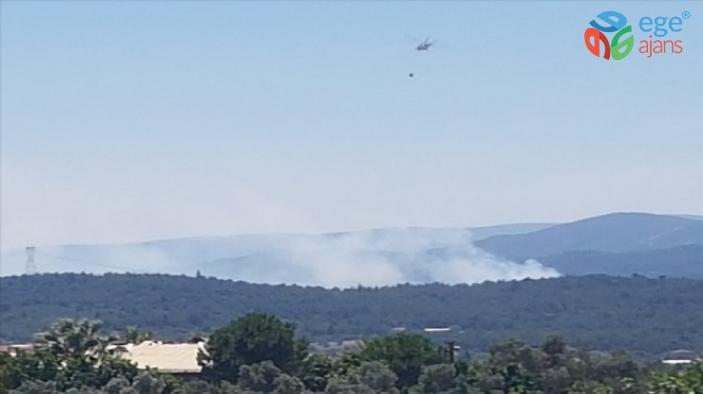 İzmir'in Urla ilçesindeki orman yangınıyla ilgili bir kişi gözaltına alındı