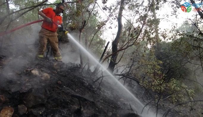 Mersin'de orman yangınında 2 hektar kızılçam zarar gördü