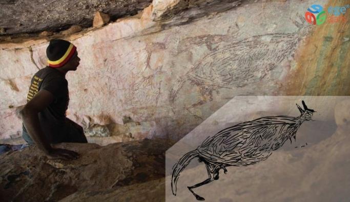 Avustralya'nın en eski kaya çizimi keşfedildi