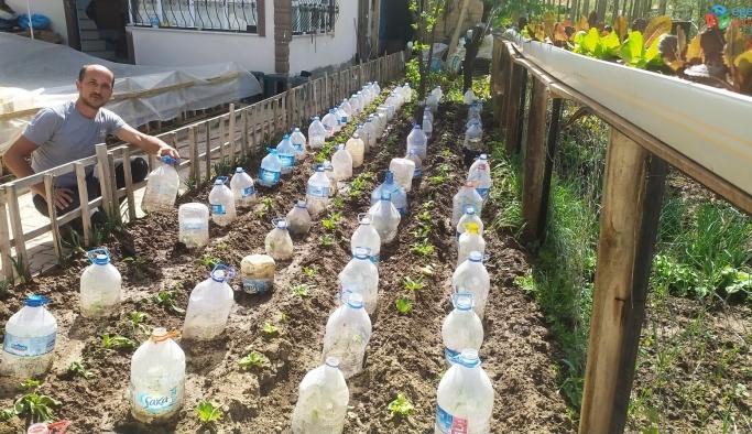 Sebze fidelerini soğuktan pet şişe ile koruyor