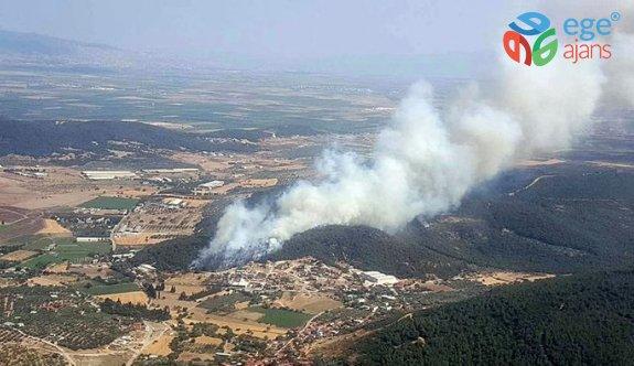Son dakika: İzmir Foça'da ormanlık alanda yangın çıktı