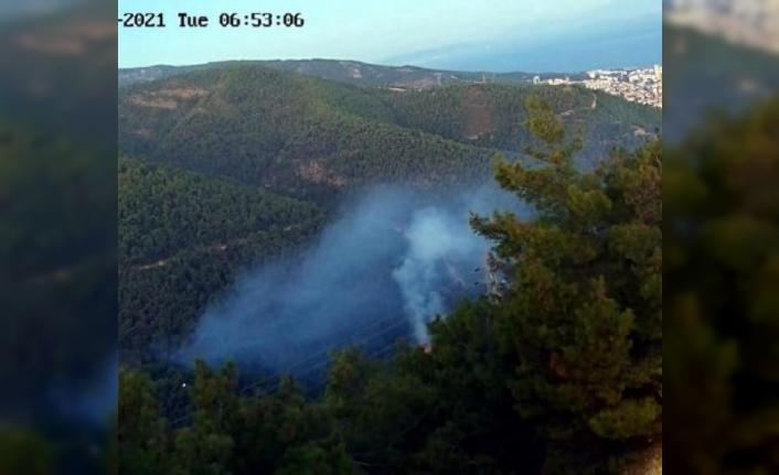 Balçova'da kundaklama kokan orman yangını: 1 gözaltı