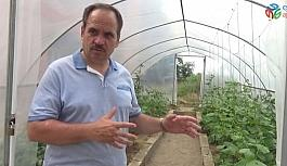 Okulda yerli tohum üretiyorlar