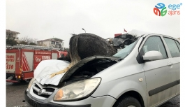 İstanbul'da korkunç kaza! Başıboş at, aracın ön camından içeri girdi