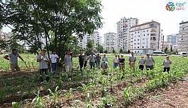 Mezitli'de 'Kent içi tarım projesi' başarıyla sürüyor