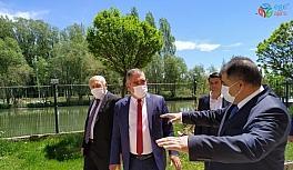 Milletvekili Battal, Aydıntepe ve Demirözü ilçelerinde incelemelerde bulundu