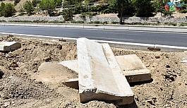 Başkent'te ağaçların kuruma nedeni susuzluk değil altındaki beton