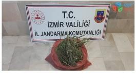 İZMİR'DE UYUŞTURUCU OPERASYONU