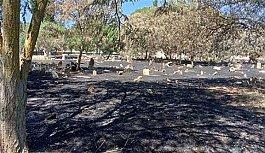 Manisa'da akıllara durgunluk veren olay: Mezarlığı yakarak temizlediler