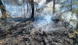 Kısıtlamada mangal yakan 3 kafadar 5 hektar...