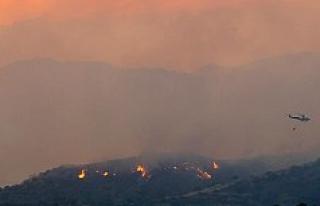 Kıbrıs Rum kesiminde çıkan yangında dört kişi...