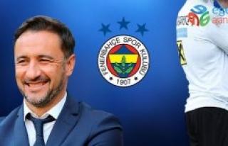 Son dakika: Fenerbahçe'de Vitor Pereira'nın...