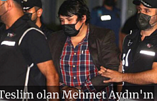Teslim olan Mehmet Aydın'ın ilk ifadesi ortaya...