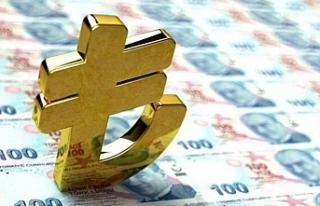 Dijital TL için ilk somut adım: Merkez Bankası...