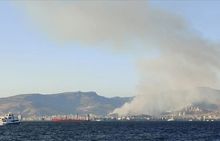 Karşıyaka'da çıkan orman yangını söndürüldü
