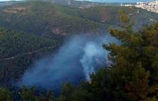 Balçova'da kundaklama kokan orman yangını:...