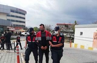 İzmir'de 'Yeşil Reçete' operasyonu:...