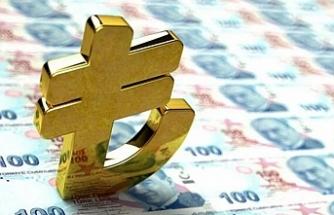Dijital TL için ilk somut adım: Merkez Bankası platform oluşturdu